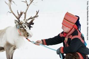 Same_Lappland